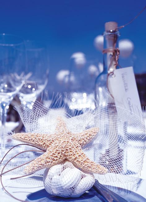 Starfish theme